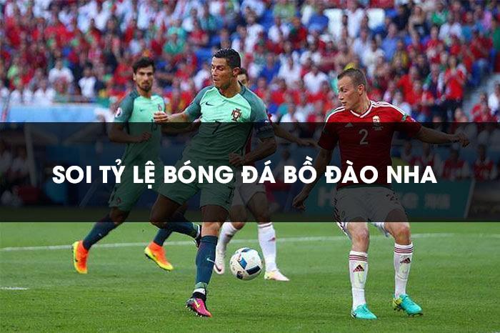 Kinh nghiệm soi tỷ lệ bóng đá Bồ Đào Nha hiệu quả nhất